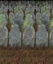 Halloween scenesetter begraafplaats trend