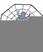 Halloween spinnenweb 29 x 29 cm halloween versiering met spinnetje trend
