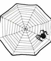 Halloween spinnenweb 40 x 40 cm trend