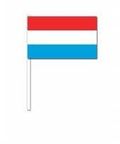 Handvlag luxemburg 12 x 24 cm trend