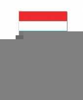 Handvlag luxemburg set van 10 trend