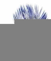 Hanekam kobalt blauw met wit trend