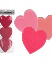 Hartjes badsponzen rood roze 3 stuks trend