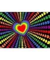 Hartjes regenboog vlag 90 x 150 cm trend