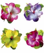 Hawaii bloemen haarklem gekleurd trend
