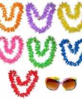 Hawaii gekleurde bloemenkransen met bril pakket 7 personen trend