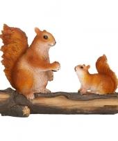 Herfstbeeldje eekhoorns 24 x 10 x 18 cm trend