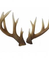 Hert gewei 34 cm trend