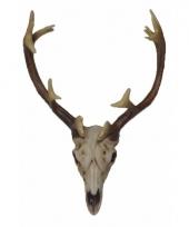 Hert schedel met gewei 26 cm trend