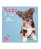 Honden kalender puppies 2018 trend