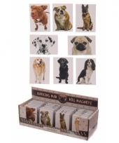 Honden magneet dalmatier trend