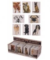 Honden magneet mopshond trend