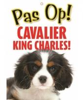 Honden waakbord pas op cavalier king charles 21 x 15 cm trend