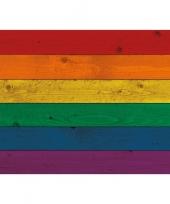 Horizontale vlag poster regenboog 84 cm trend