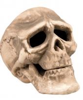 Horror decoratie schedels 22 cm trend