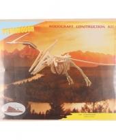 Houten pteranodon dinosaurier trend