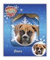 Huisdieren kerstballen hondjes boxer trend