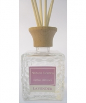Interieur parfum met geurolie met stokjes 80 ml trend