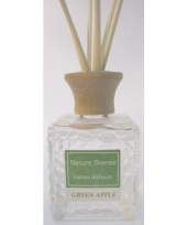 Interieur parfum met geurolie met stokjes groene appel 80 ml trend