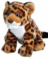 Jaguars luipaarden speelgoed artikelen jaguar knuffelbeest gevlekt 35 cm trend