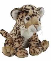 Jaguars speelgoed artikelen jaguar knuffelbeest bruin 30 cm trend