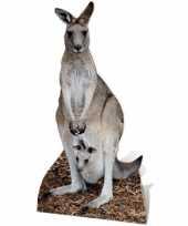Kangoeroe versiering bord trend