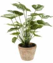 Kantoor kunstplant anthurium groen in pot 50 cm trend