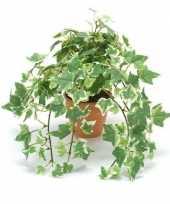 Kantoor kunstplant klimop groen wit in terracotta pot 30 cm trend