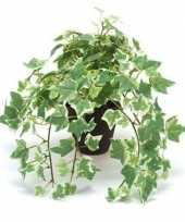 Kantoor kunstplant klimop groen wit in zwarte pot 30 cm trend