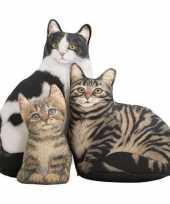 Katten poezen deurstopper bruine tabby 23 cm trend