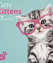 Katten poezen kalender kittens studio 2018 trend