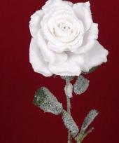 Kerst roos met sneeuw 66 cm trend