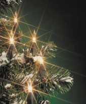 Kerstboom lampjes 160 stuks trend