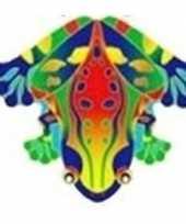 Kikker vlieger 55 x 65 cm trend