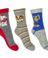 Kinder paw patrol thema sokken 3 pak grijs trend