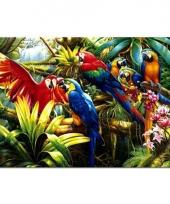 Kinder placemats ara papegaaien trend