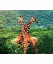 Kinder placemats giraffe trend