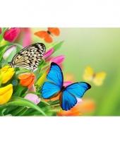 Kinder placemats vlinders trend