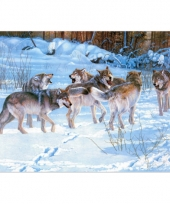 Kinder placemats wolfjes trend