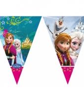 Kinderfeestje frozen vlaggetjeslijn 2 meter trend
