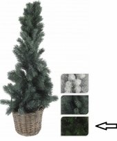 Kleine kerstboom donkergroen in mand 80 cm trend