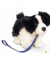 Knuffel hond border collie aangelijnd trend