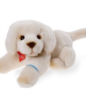Knuffeldier golden retriever 30 cm trend