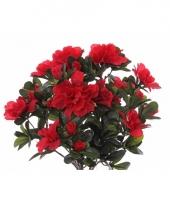 Kunst azaleaplant rood 20 cm trend