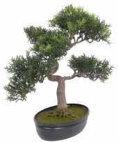 Kunst bonsai met 217 blaadjes trend