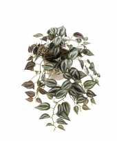 Kunst hangplant tradescantia in oude terracotta pot 16 cm trend