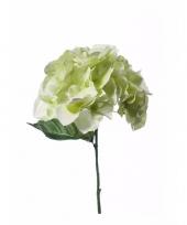 Kunstbloem hortensia groen trend
