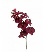Kunstbloem orchidee paars trend