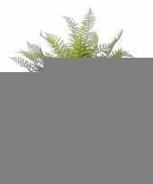 Kunstplant reportando experientia 76 cm trend