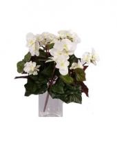 Kunstplant witte begonia 30 cm trend